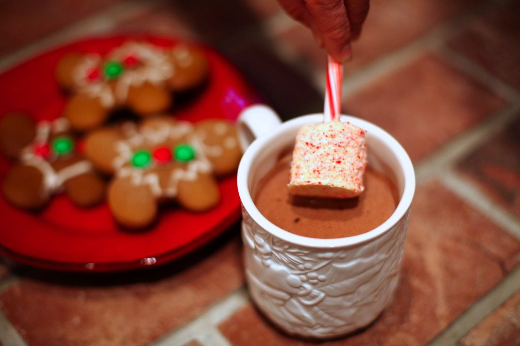 Hot Chocolate with Candy Cane Stirring Sticks by Tammy Mitchell