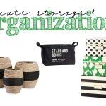 Shopping: Cute Storage Options…Baskets and Boxes