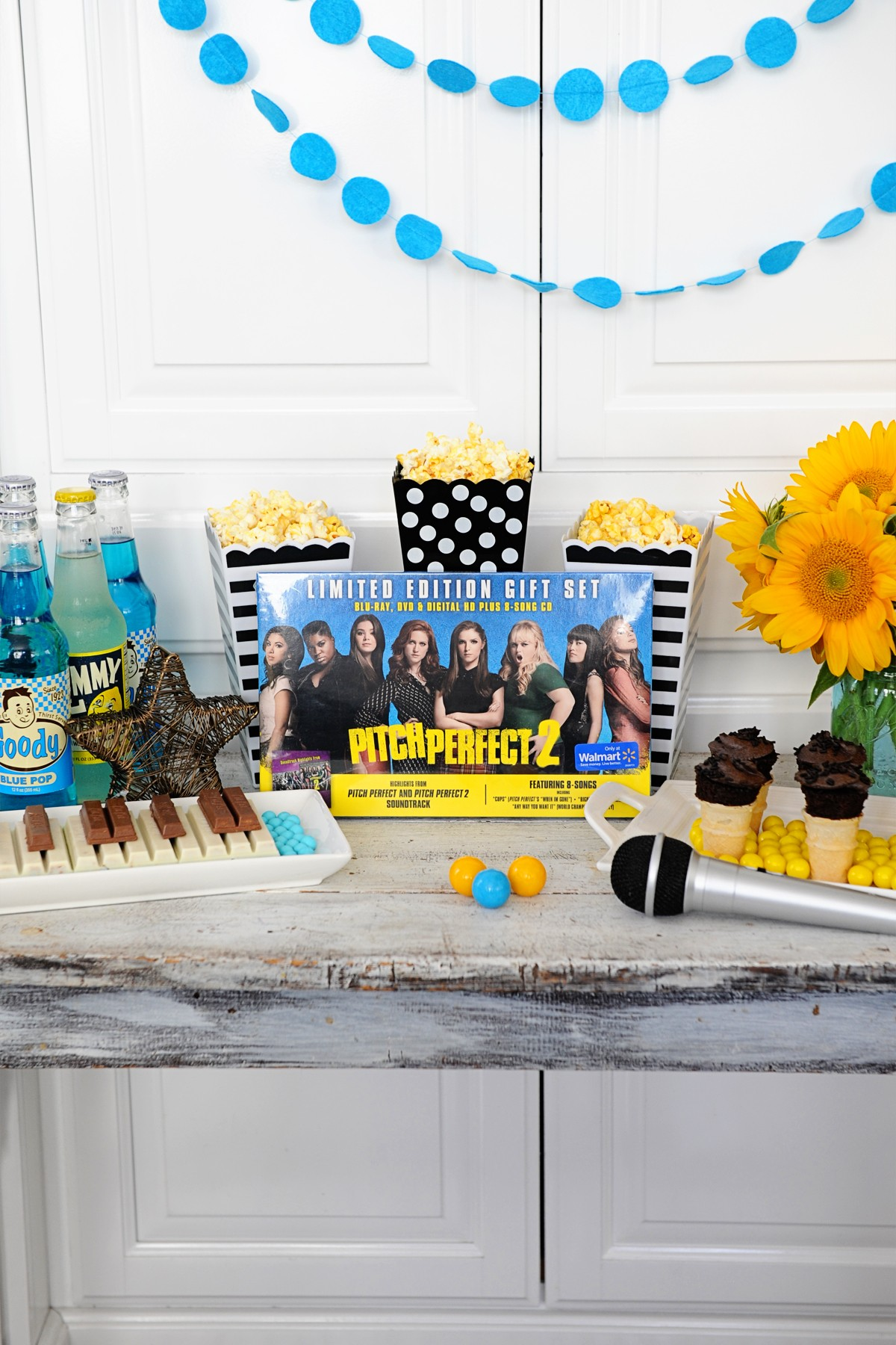 Pitch Perfect Party Ideas Movie Night Karaoke Party Supplies