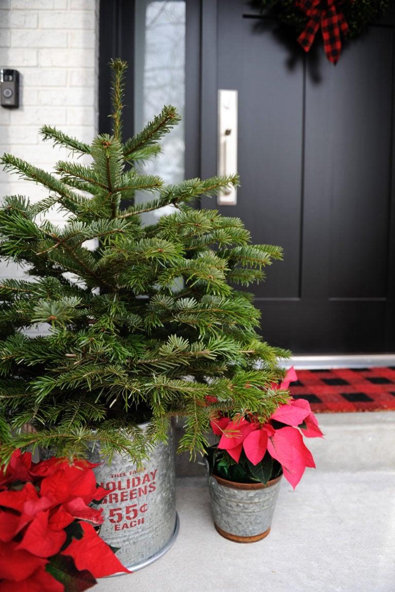Christmas home tour 8