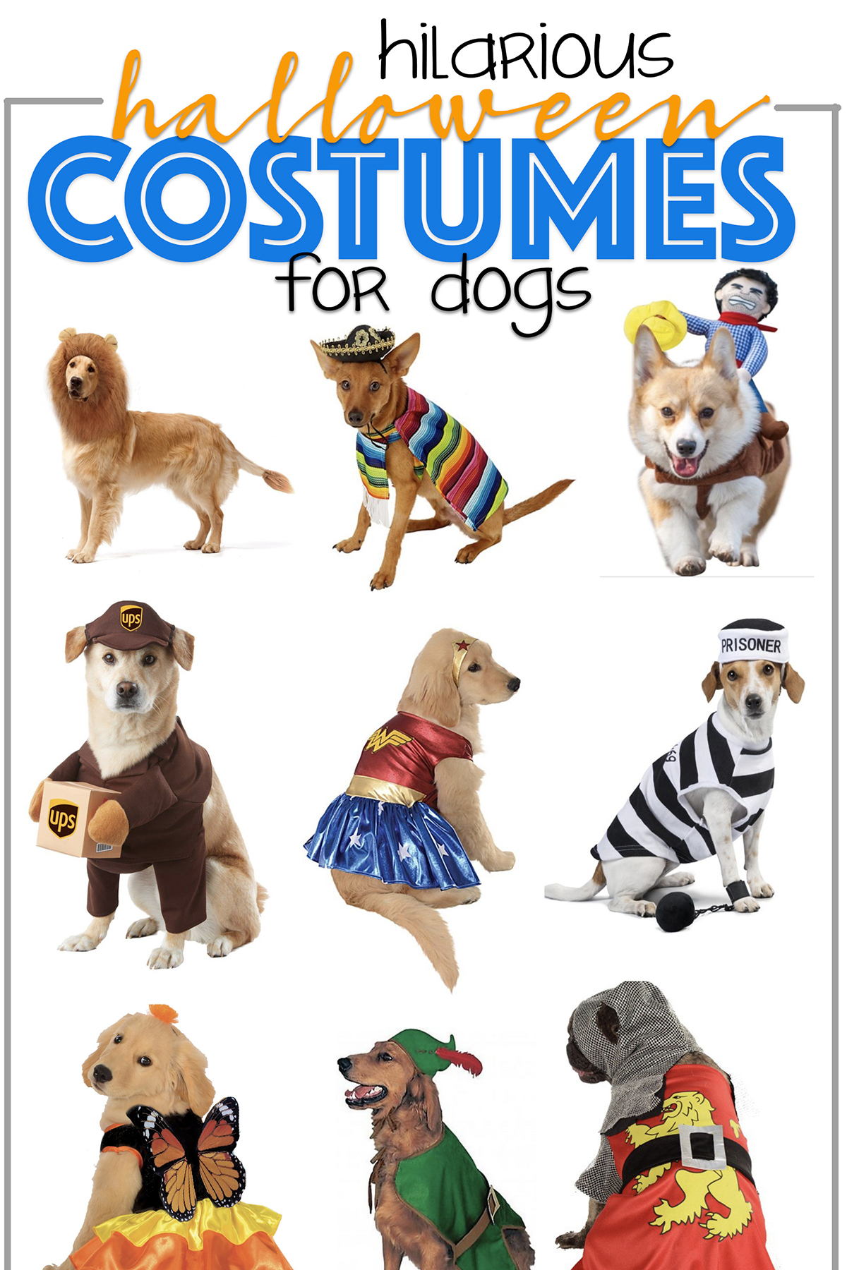 Featured hilarious halloween costumes for dogs