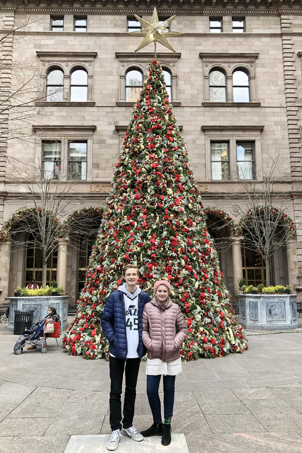 Lotte new york palace at christmas