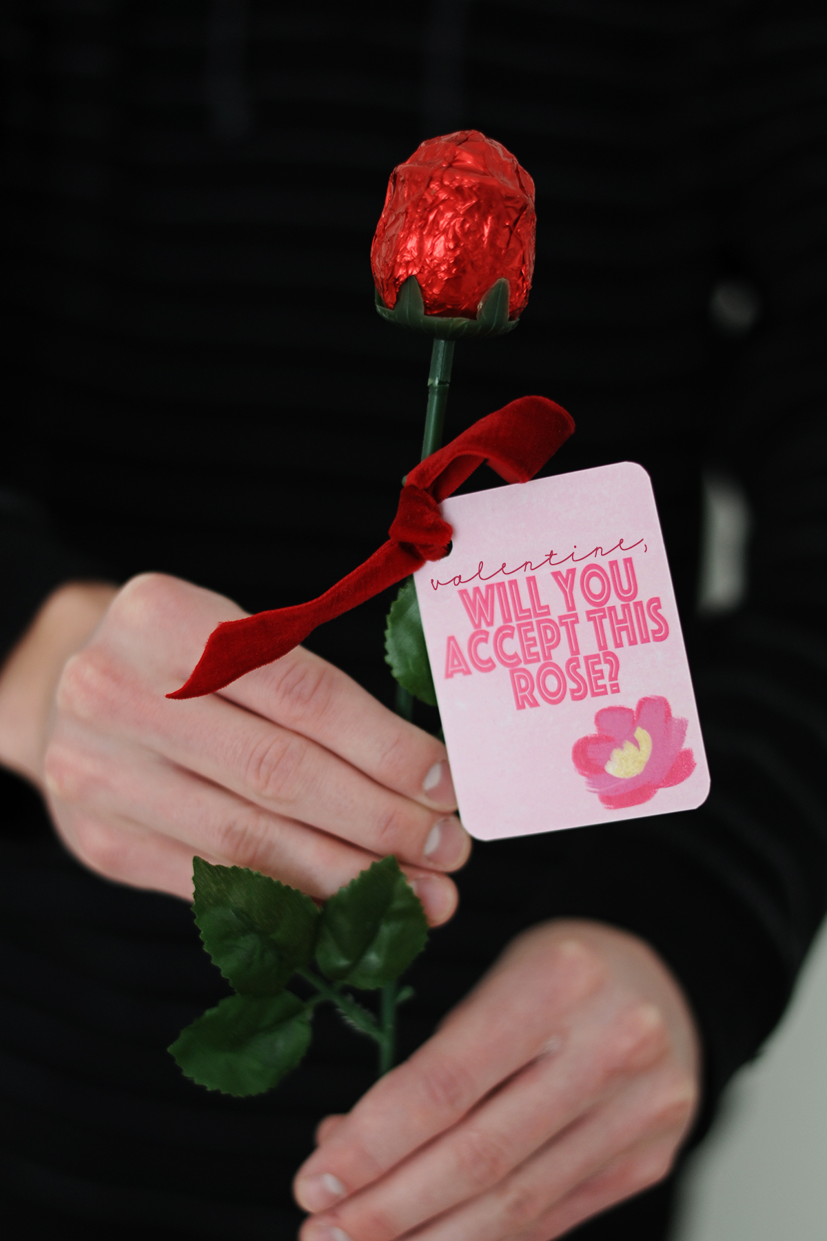 Valentine will you accept this rose