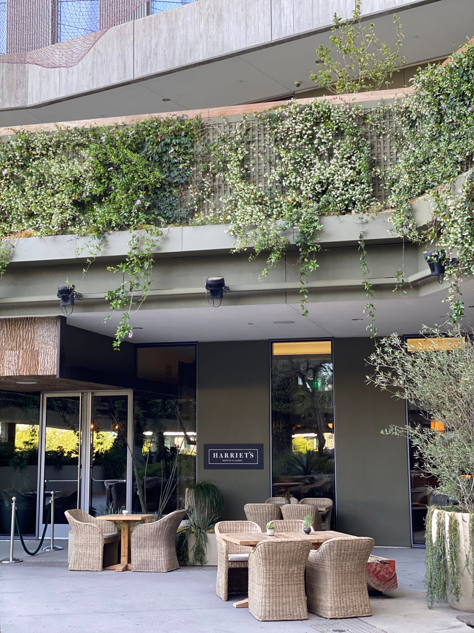 Harriet's Rooftop 1 hotel west hollywood review