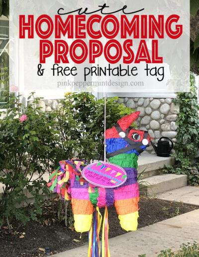 cute homecoming proposal idea